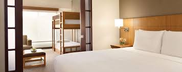 Florida travel mattress images Hyatt place orlando lake buena vista hotel review florida travel jpg