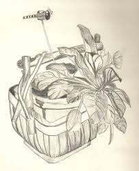 flower basket sketch drawing and painting pinterest flower