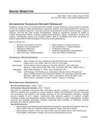 resumes exles for exle it security careerperfect