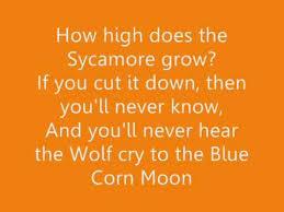 Pocahontas U0027colors Of The Wind U0027 Lyrics Youtube