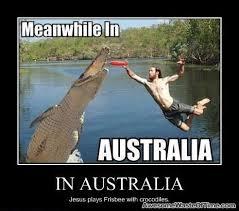 Ultimate Frisbee Memes - meanwhile in australia funny stuff pinterest australia