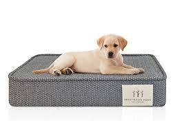 large dog bed 1 large dog bed shopping online