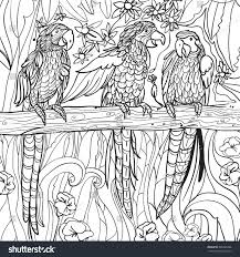 tropical coloring pages coloring pages tropical parrots flowers leaves stock vector