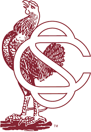 gamecock coloring pages vintage carolina logos archive cockytalk
