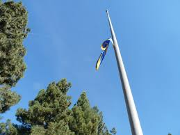 Flags Today At Half Mast Light Bright And Sparkling Half Mast For Herbert