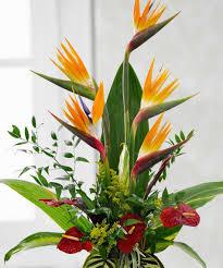 florals for every style norfolk florist