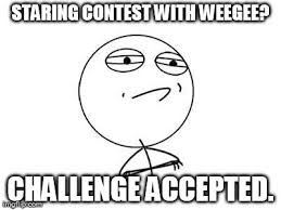 Weegee Memes - challenge accepted rage face meme imgflip