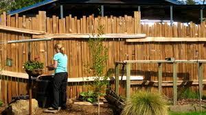 furniture charming best privacy fence for backyard cheap