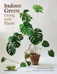 Greenliving by Indoor Green Living With Plants Mr Kitly