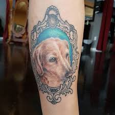 the 25 best cheyenne pen ideas on pinterest mandala lion tattoo