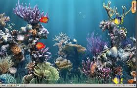 Wallpaper Ikan Bergerak Untuk Pc | pusa