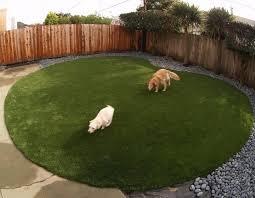 Dog In The Backyard by Garden Design Garden Design With Pet Ideas For The Backyard On