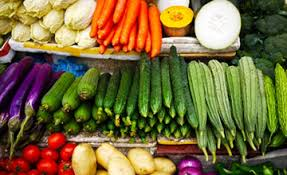 the benefits of a plant based diet