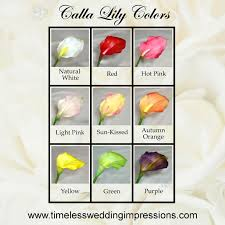 calla colors calla summer wedding flowers white or green my