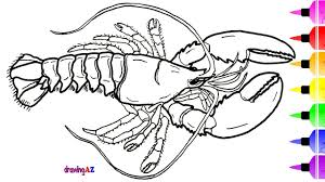 american blue lobster coloring page for kids u0026 dinosaur coloring