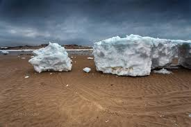 Cape Cod Classified Ads Icebergs U0027 Wash Up On Cape Cod Shores After Giant Ice Sheets Break
