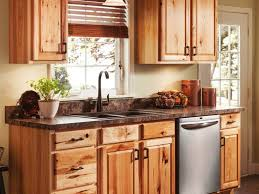 Price Kitchen Cabinets Online Kitchen Cabinets Amazing Cheap Kitchen Cabinets Online