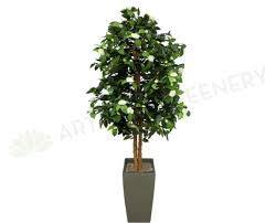Trees With White Flowers T0044whi Artificial Camellia Tree With White Flowers 190cm Real