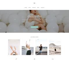 gallery pro theme by bloom