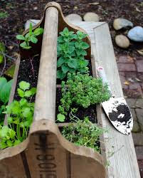 simple herb planter box u2014 pollinate journal