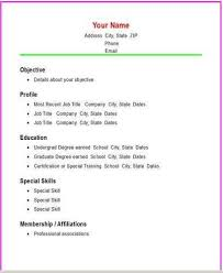 Basic Job Resume Examples by Basic Resume Examples