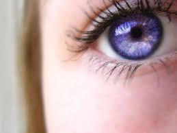 purple eye color eye colors eye color facts lenses and eye