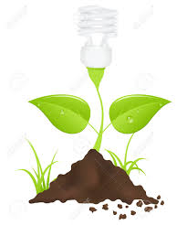 light bulb plant save energy vector illustration royalty free