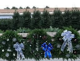 best nh christmas tree lot near manchester nh and concord nh