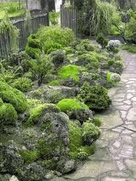 welcome to the scottish rock garden club a sziklakertészkedés