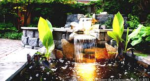 pond design ideas home design ideas