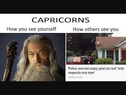 Capricorn Meme - capricorn meme how you see yourself vs how others see you police