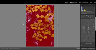 how to apply local adjustments to photos in photoshop lightroom