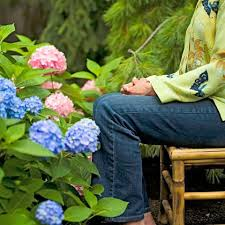 Meditation Garden Ideas A Japanese Meditation Garden Midwest Living