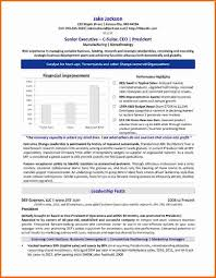 C Level Executive Resume Executive Resume Writers Free Resume Example And Writing Download