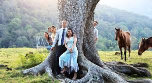 wedding arches gold coast me marilyn best celebrant fabulous fresh upbeat
