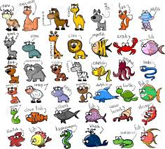 cartoon drawing zoo zoo animals coloring pages including cartoon