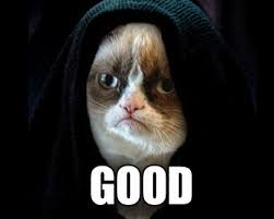 Grumpy Cat has no need for