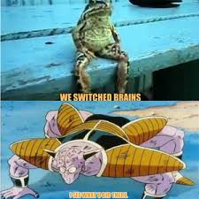 Battletoads Meme - rmx rmx the secret leader of the battletoads by emirs0n meme center