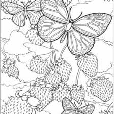difficult coloring pages detailed coloring pages for older kids cooloring printable