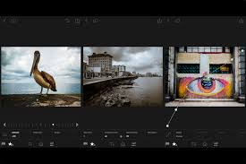 lightroom for android adobe brings new lightroom features to android in version 2 0