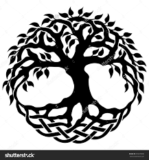 celtic tree of drawing tree of bible clipart drawing