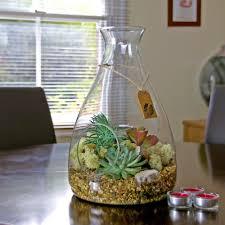 large glass bell terrarium kit with succulent plants u2013 the art of