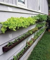 Vertical Garden For Balcony - diy garden top gardening ideas for small balcony garden diy