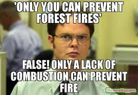Only You Can Prevent Forest Fires Meme - only you can prevent forest fires false only a lack of combustion