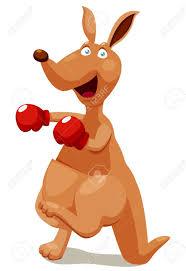 boxing kangaroo images u0026 stock pictures royalty free boxing