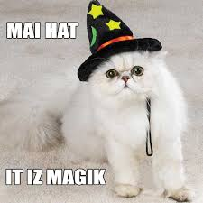 Hat Meme - our first meme the magical talking hat