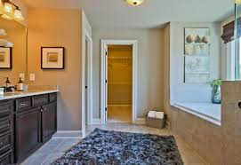 Dream Home Interiors Buford Ga by Find Your Dream Home At Meadows At Mill Creek Home South