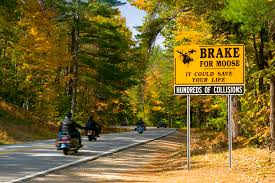 New Hampshire scenery images Scenic fall foliage drives in new hampshire jpg
