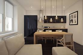Small One Bedroom Apartment Decorating Ideas Amusing 70 Light Hardwood Apartment Decoration Design Inspiration