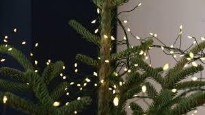 micro wire tree cluster lights il014